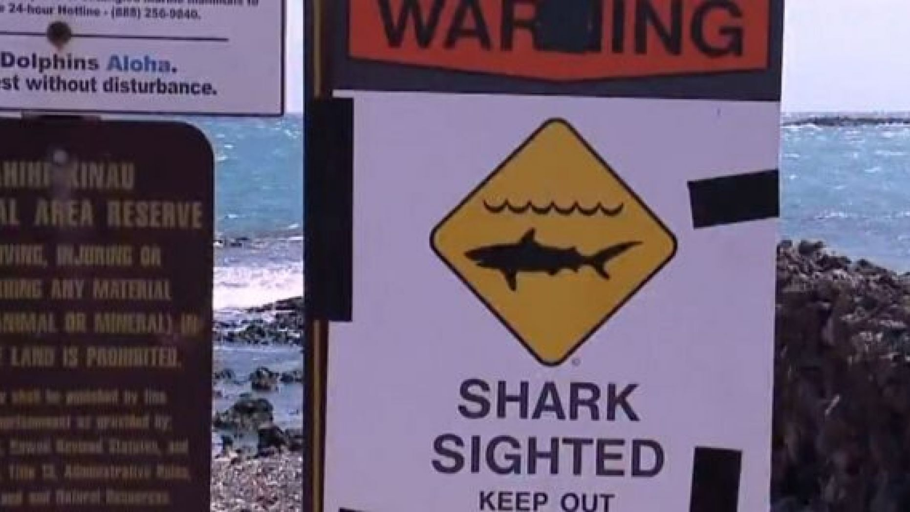 Shark warning signs were posted in the Ka