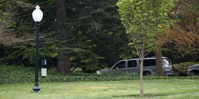 This Saturday, April 28, 2018, photo shows an empty area where a tree was planted by U.S. President Donald Trump and French President Emmanuel Macron during a tree planting ceremony on the South Lawn of the White House in Washington. (AP Photo/Carolyn Kaster)