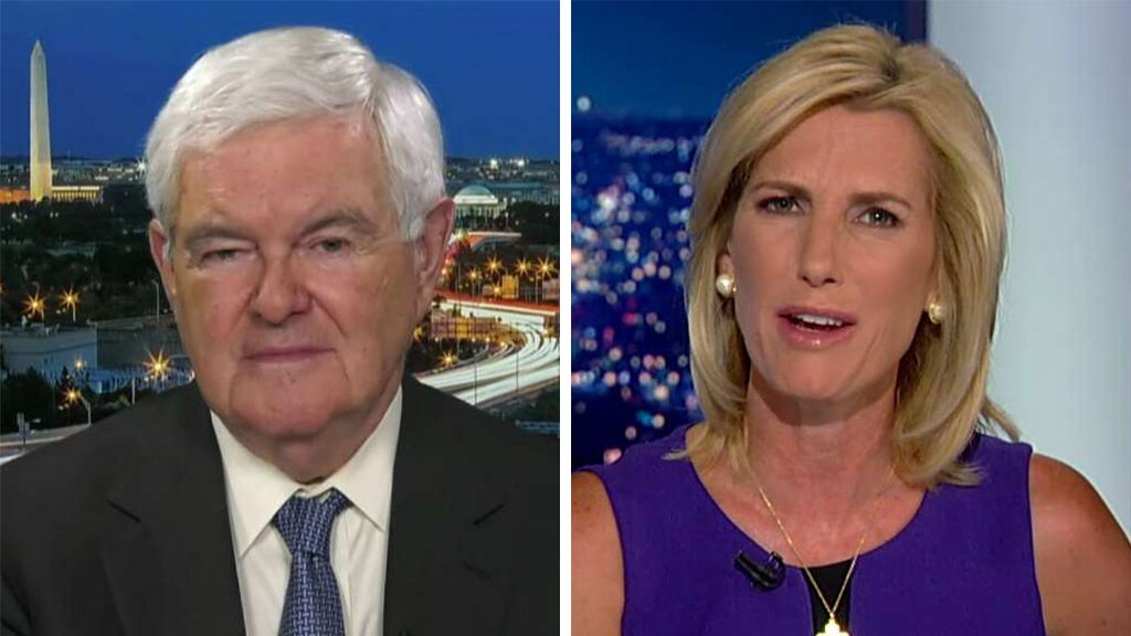 Newt Gingrich on anti-American sentiment: 'The number of lies' from the left is 'astonishing'