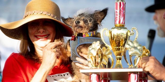 Scamp the Tramp is held by Darlene Wright after winning the World