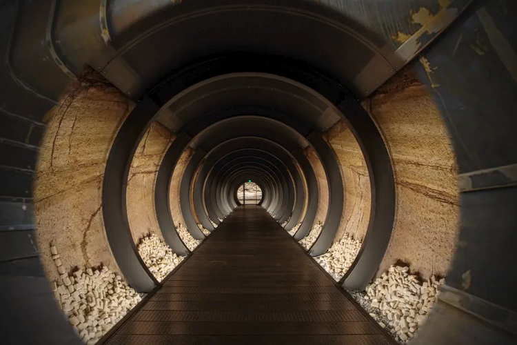 Art heaven or hell? Museum's epic £15m tunnel brings to life Dante's Divine Comedy