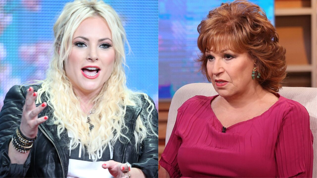 Meghan McCain chides Joy Behar over her call for Americans not to answer census citizenship question