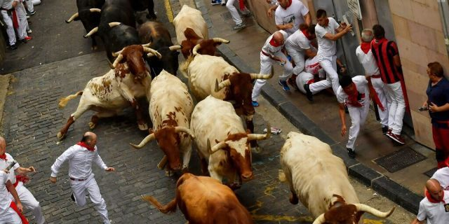 Revellers run next to fighting bulls during the running of the bulls at the San Fermin Festival, in Pamplona, northern Spain, Sunday, July 7, 2019.