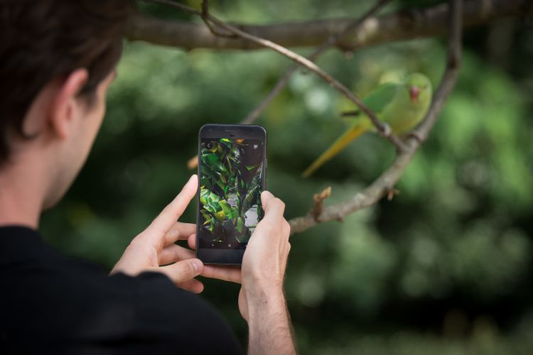 The natural world meets the virtual in Jakob Kudsk Steenson's augmented reality experience at Serpentine Galleries