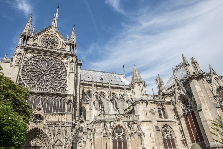 Construction on Notre Dame pushed back to 19 August as steps taken to decontaminate site from lead