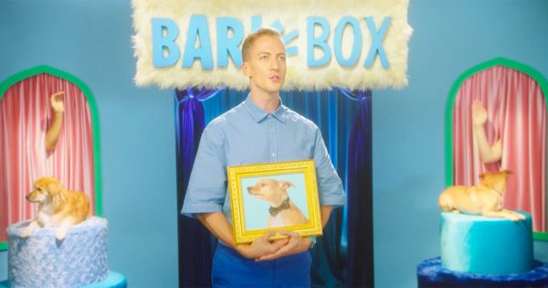 For National Dog Day, BarkBox Will Write a Song Based on a Photo of Your Good Pupper – Adweek
