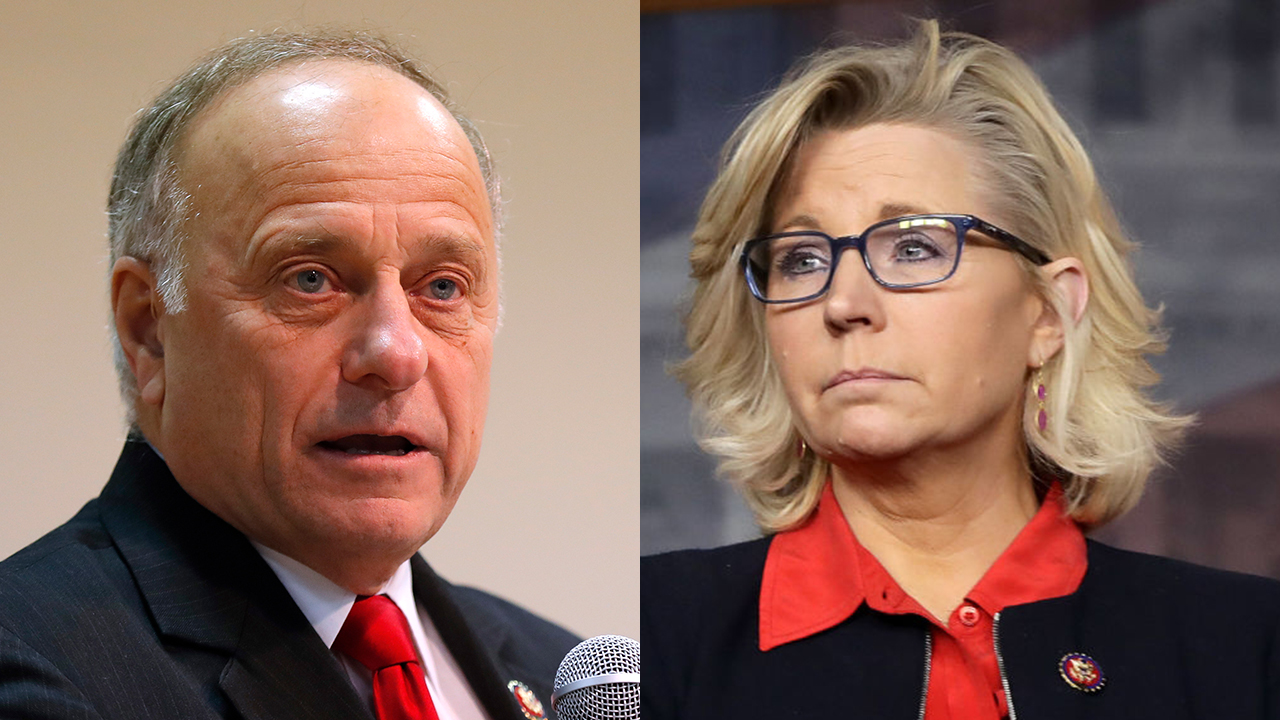 Rep. Liz Cheney blasts GOP colleague Steve King over 'appalling' rape and incest remarks: 'It's time for him to go'