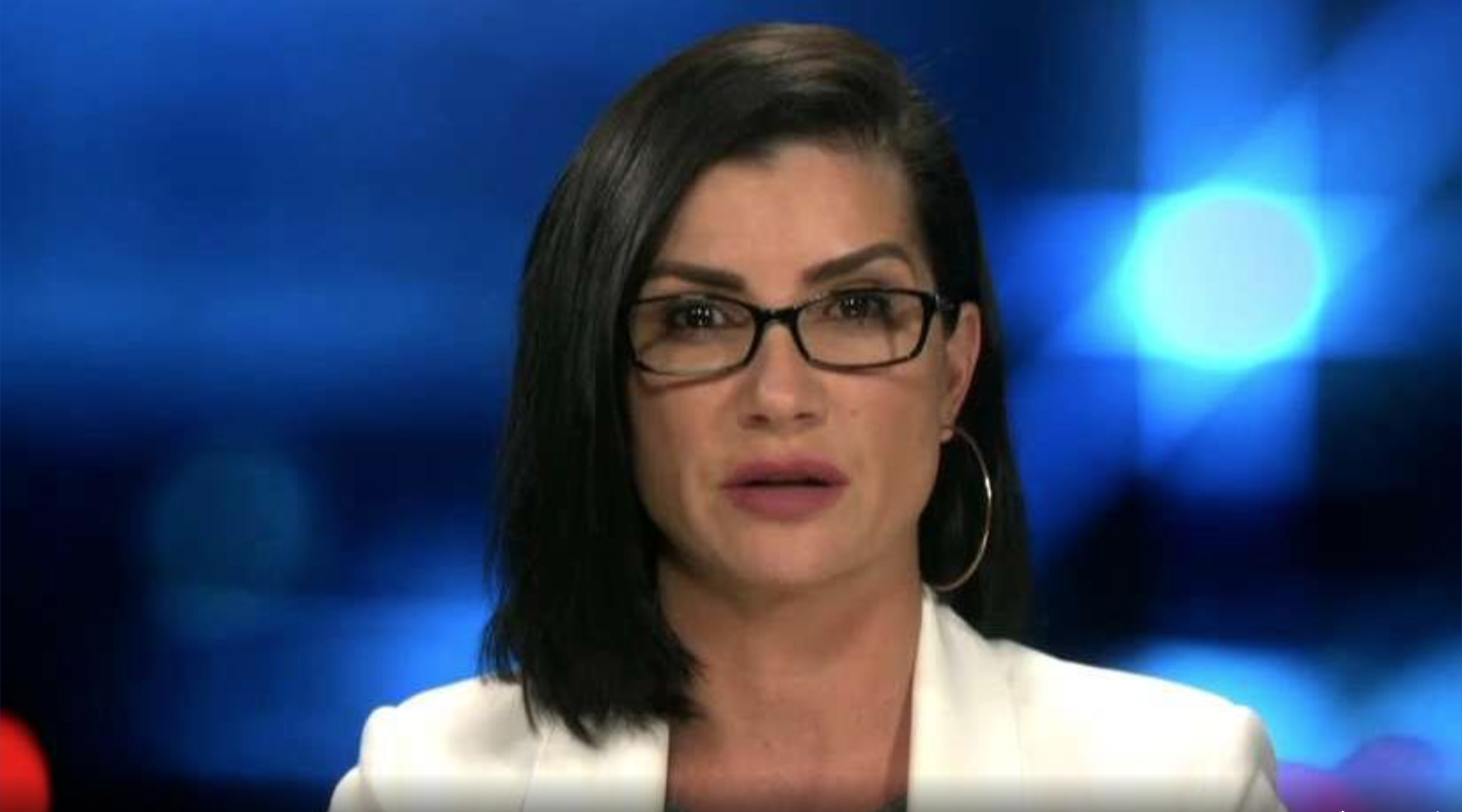 Dana Loesch calls for 'real bipartisan discussions' to tackle mass shooting prevention