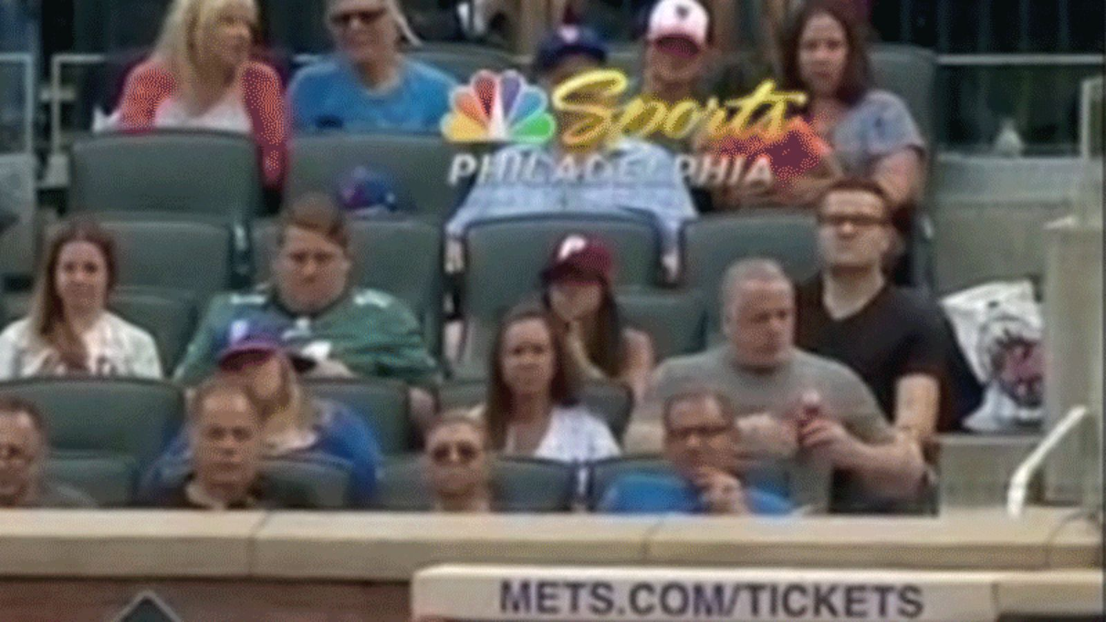 Fan at Mets-Phillies game reacts to bug, goes viral: report