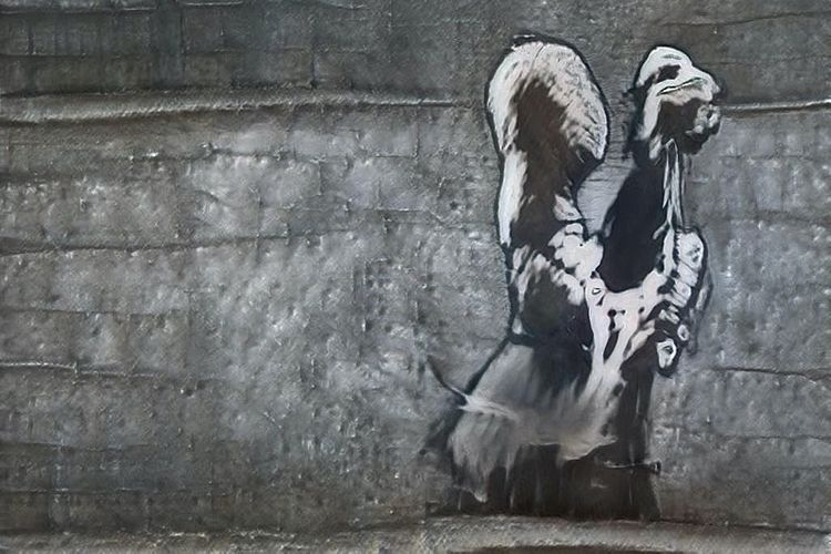 An AI bot has figured out how to draw like Banksy. And it's uncanny