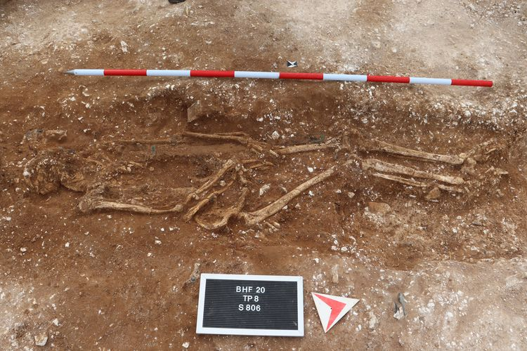 Remains of 'tall and robust' Anglo Saxon warrior found by amateur detectorist in UK