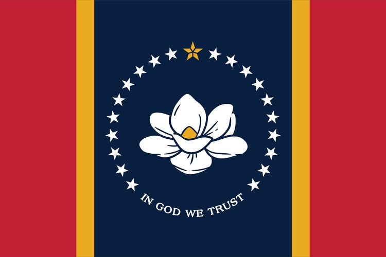 Mississippi voters approve new state flag design, trading controversial Confederate symbol for magnolia flower