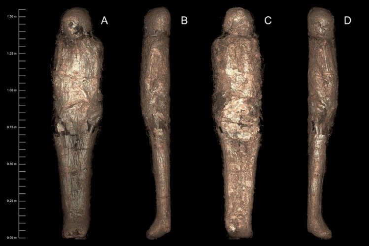 Ancient Egyptians who could not afford expensive embalming resin may have used mud instead