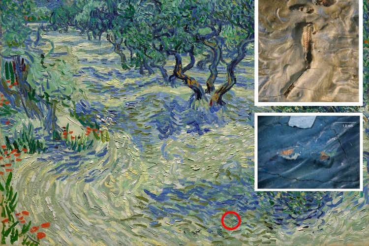 New research reveals how a grasshopper got stuck—leaving its mark in Van Gogh's painting on a summer's day in Provence